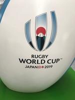 ラグビーワールドカップ.JPG