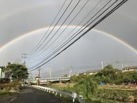 雨上がりの虹.jpg